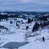 冬のタナダ
