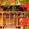 紅葉の中に佇む神社