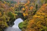 晩秋の胎内渓谷