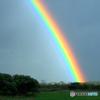 お題 「虹」