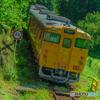 山間の観光列車
