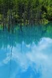 あんまり青くなかった青い池。