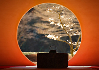 CANON Canon EOS 6Dで撮影した(円窓)の写真(画像)