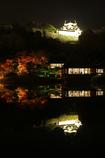 "Line symmetry ""Hikone castle"""