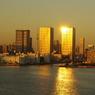 夕日を映すビル レインボーブリッジ