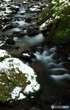 初雪の流れ