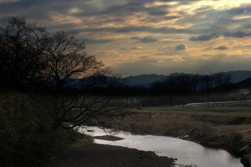 小鮒釣りしかの川
