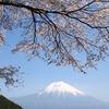 田貫湖からの霊峰富士