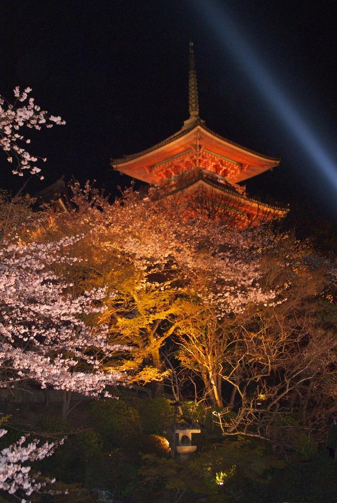 清水寺ライトアップ2