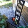 小さな野菜畑 1