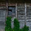 閉ざされし窓1