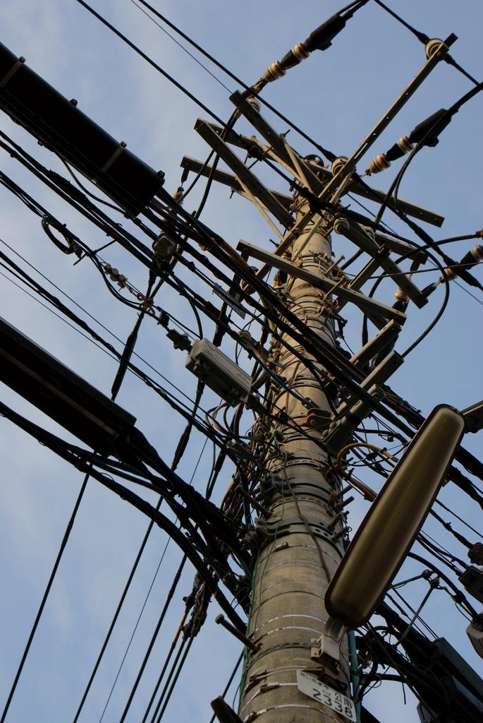 電線ジャングル