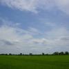 青空と田園