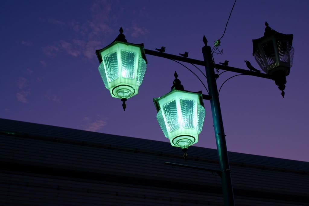 淫靡な街灯