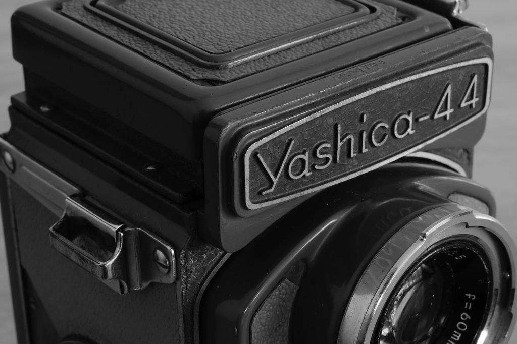 yashica44