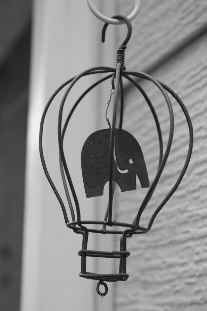 囚われた象
