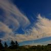 羽ばたく雲