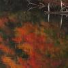 湖面の彩り