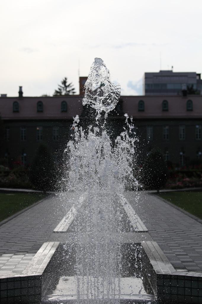 大通の噴水3