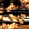 春 - 駆け足