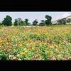 鹿児島都市農業センター