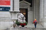 ライオンもクリスマス仕様