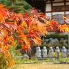 長福寺 紅葉
