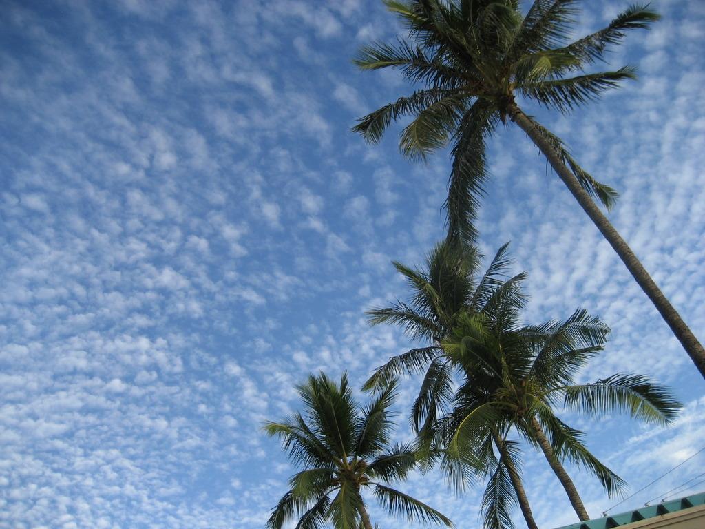 Autumn sky in Haawaii