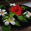花(サイパン)