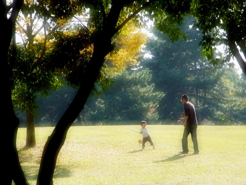 父と子の日曜日