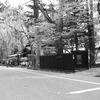 武家屋敷通り2