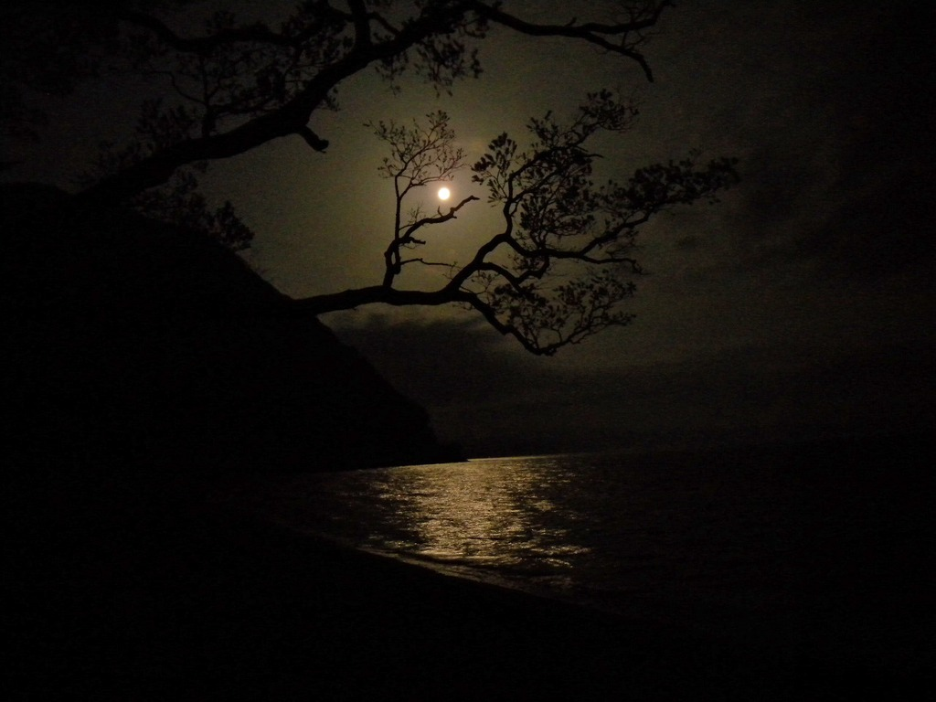 夜の猪苗代湖。
