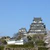 春を迎えた姫路城