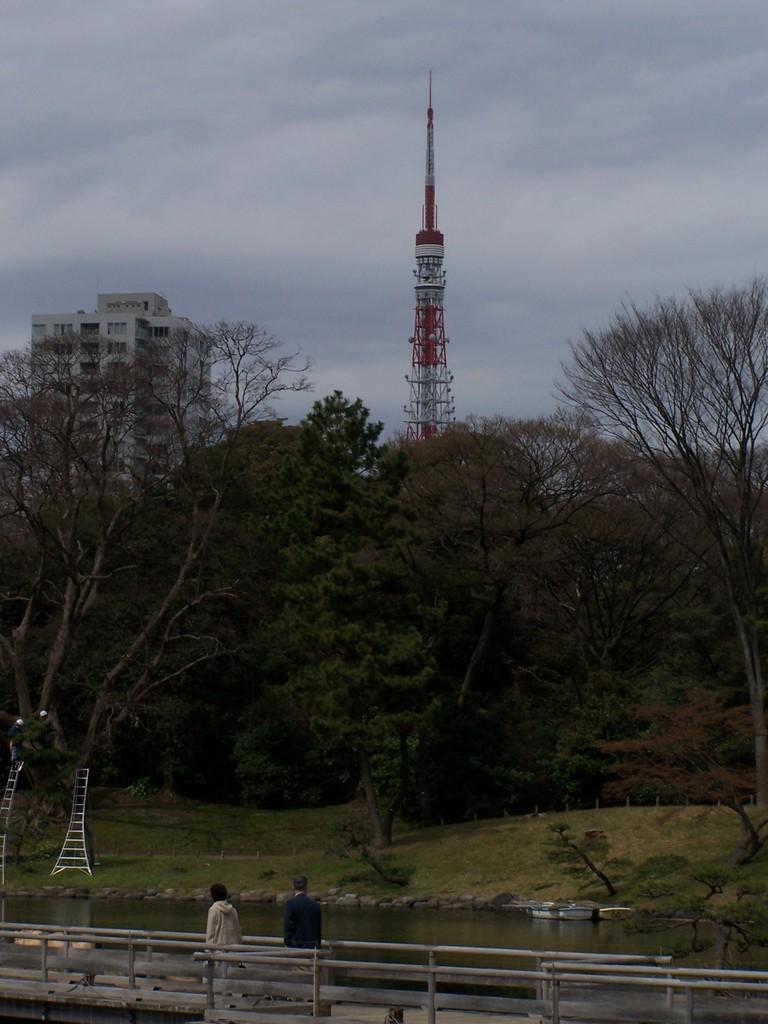 浜離宮から東京タワ-
