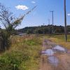 水溜りの道