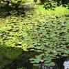 京都 南禅寺3