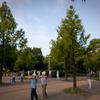 20110706-SDIM2955