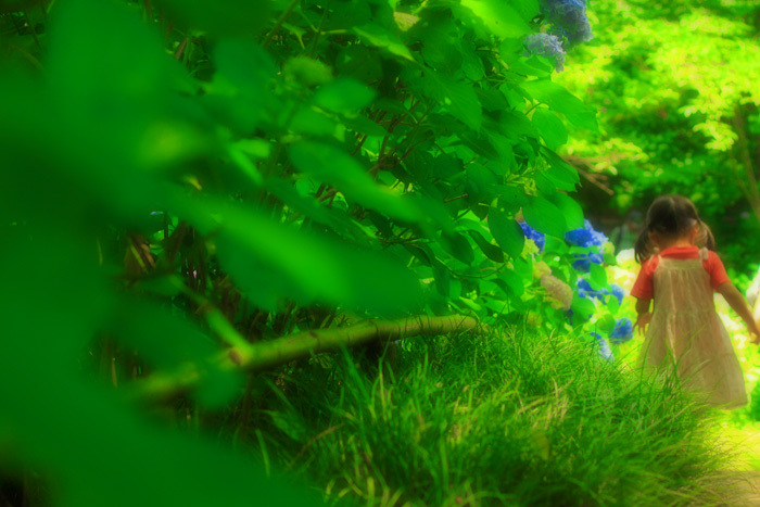 新緑と娘とちょこっと紫陽花