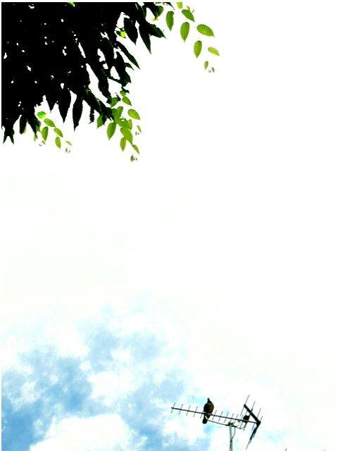 水彩な景色