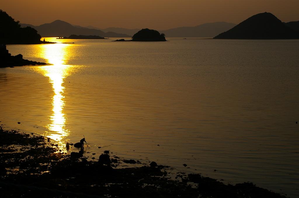 島の夕景・何かを獲る人