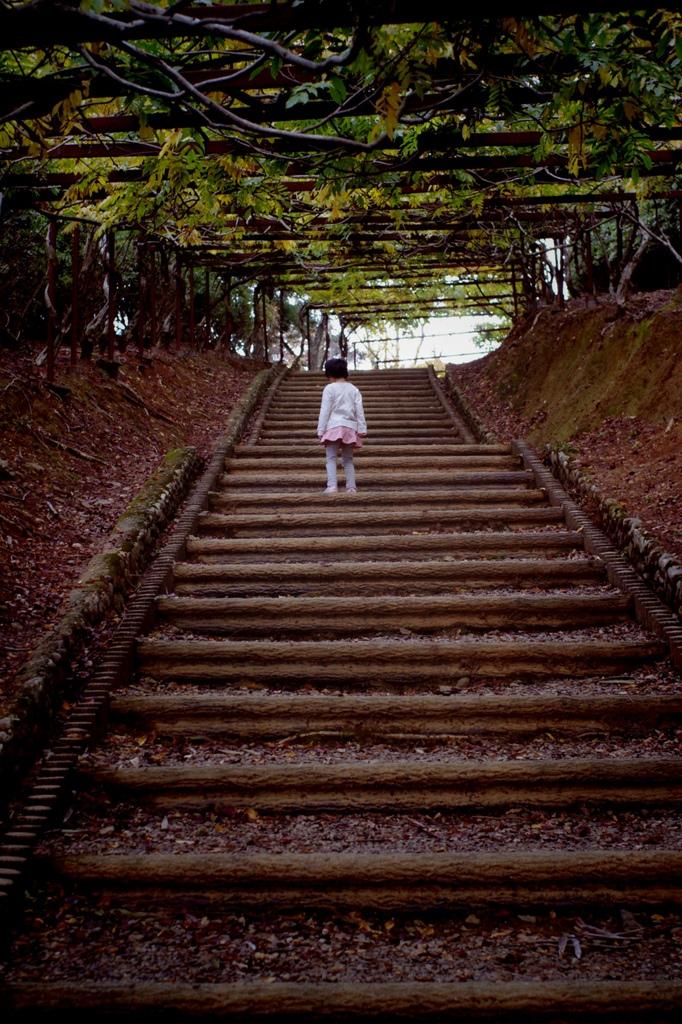 藤棚の階段