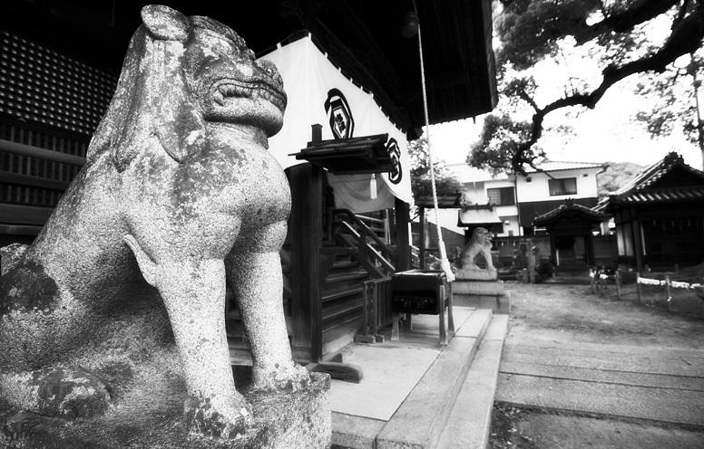 尾道 神社狛犬