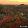 奈良の秋♪@奈良奥山ドライブウェイ