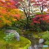 嵐山の秋模様 08
