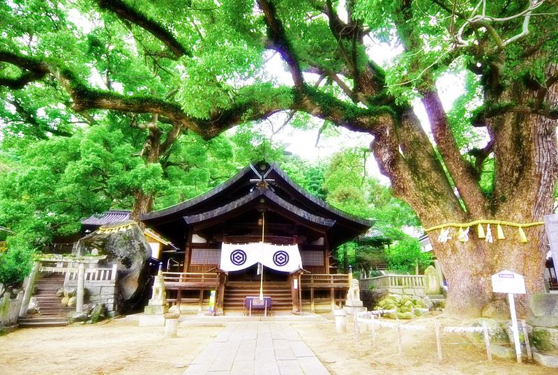 尾道 神社の雰囲気