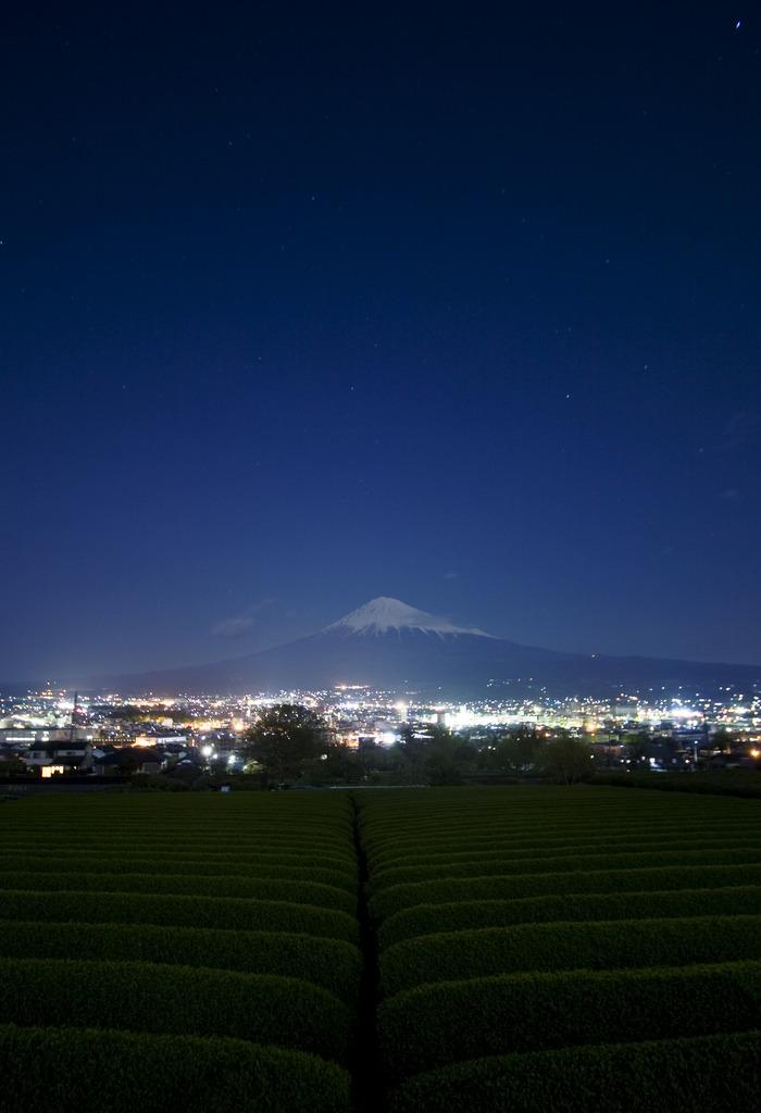 富士と茶畑