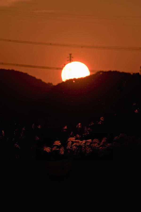 夕陽に照らされて、、、。