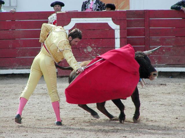 マタドールと闘牛