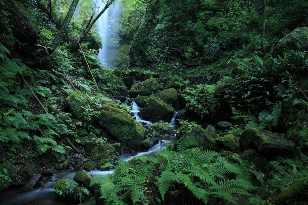 神が住む滝