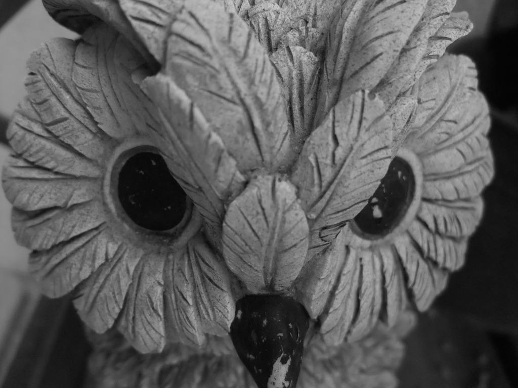 怒ってる?木製の鳥